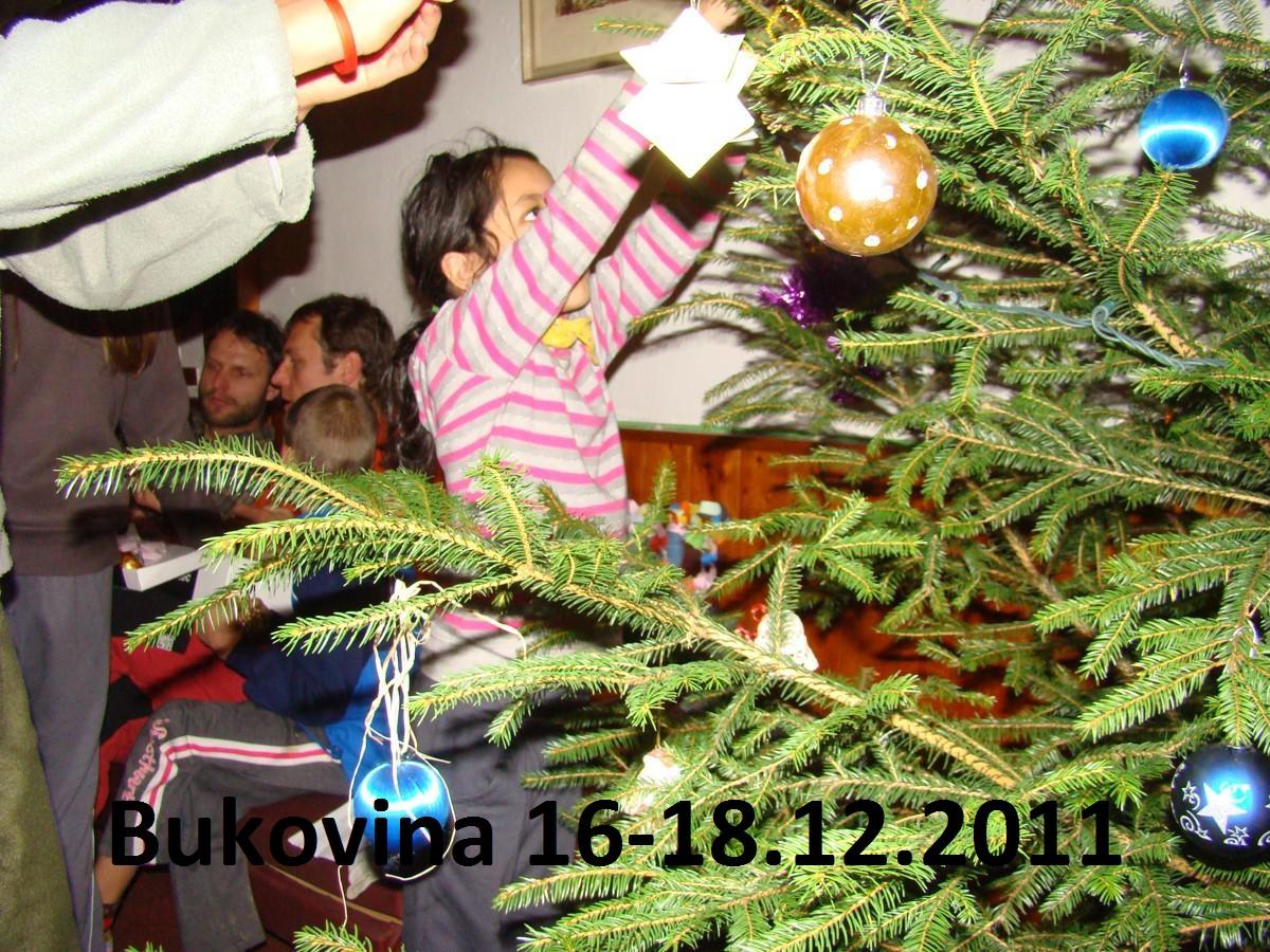 Bukovina_12.2011