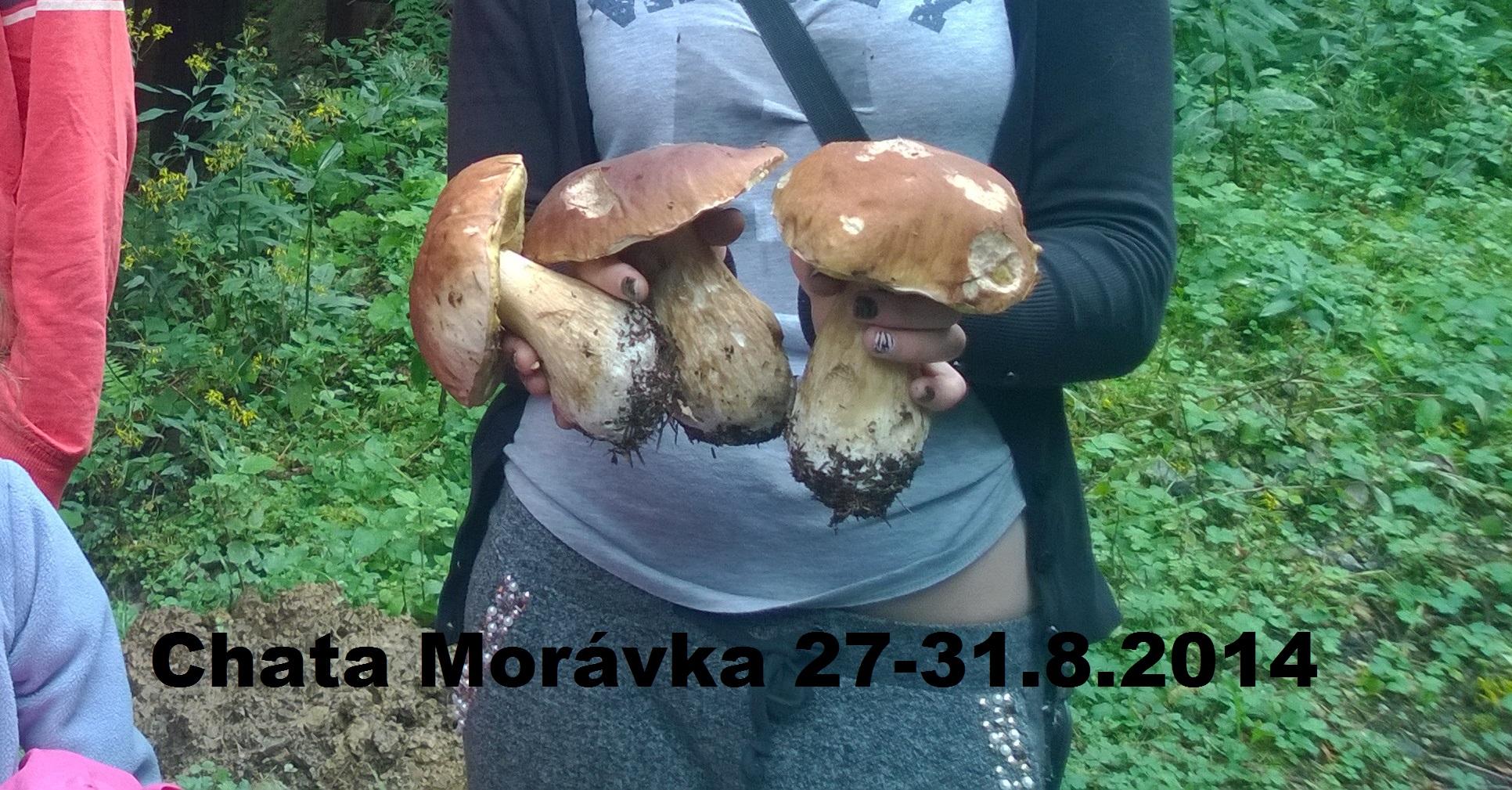 MORAVKA 27-31.8.2014-2