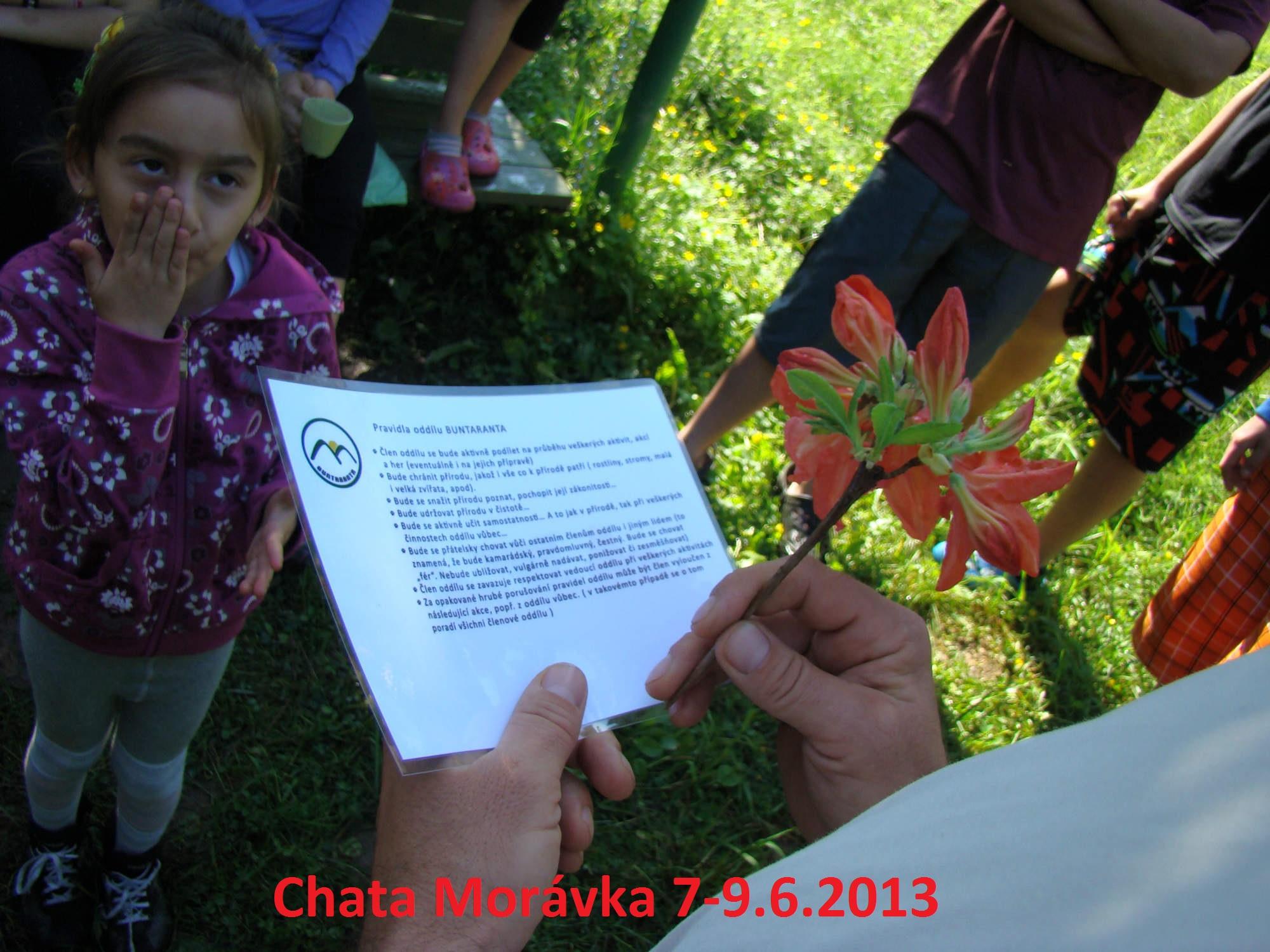Moravka_6.2013