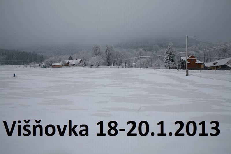 Visnovka_1.2013